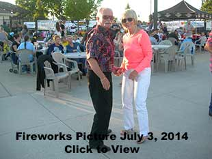Fire Works Pictures