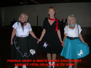 Poodle Skirt Gallery